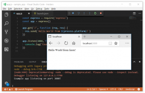 Debugging Node.js with VS Code and WSL